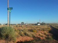Nice, Near Painted Desert, $150 P/M : Sun Valley : Navajo County : Arizona