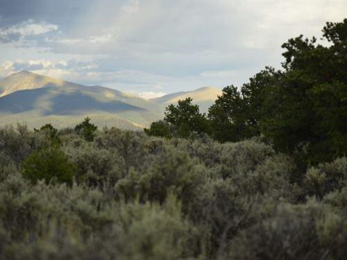2.53 Acre Lot In Wild Horse Mesa : San Luis : Costilla County : Colorado