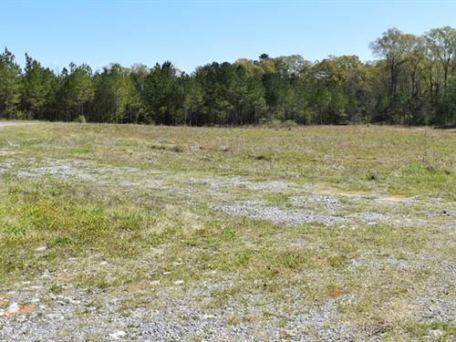 Commercial Opportunity : Vincent : Shelby County : Alabama