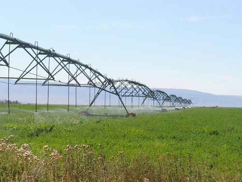 McCormack Farm : Casper : Natrona County : Wyoming