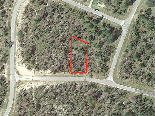 .29 Acre Lot Outside Sunny Hills : Chipley : Washington County : Florida