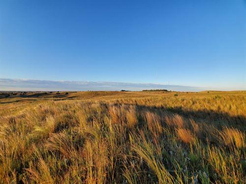 Hwy 83 Development Pasture : North Platte : Lincoln County : Nebraska