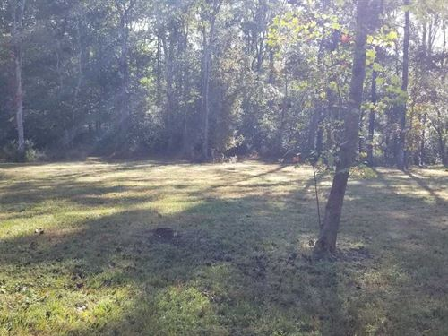 Come Build Your Home on This Amazi : Dunlap : Bledsoe County : Tennessee
