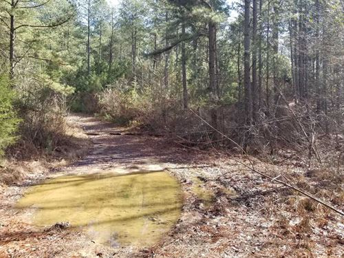50 Acres Acreage Near Sweetwater : Sweetwater : McMinn County : Tennessee