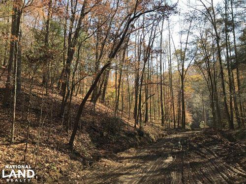 Wooded Homesite & Recreational Prop : Harriman : Roane County : Tennessee