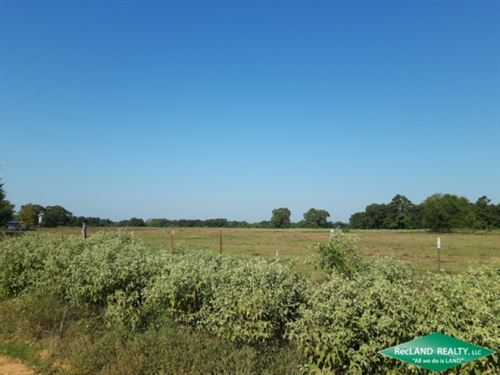 92.4 Ac, Cattle Ranch & Small : Nacogdoches : Texas