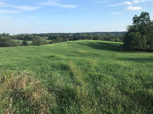 Hunting/Grass Farm Pond Mercer : Princeton : Mercer County : Missouri
