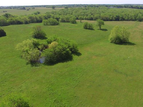 78 Acres Wheatland, Hickory County : Wheatland : Hickory County : Missouri