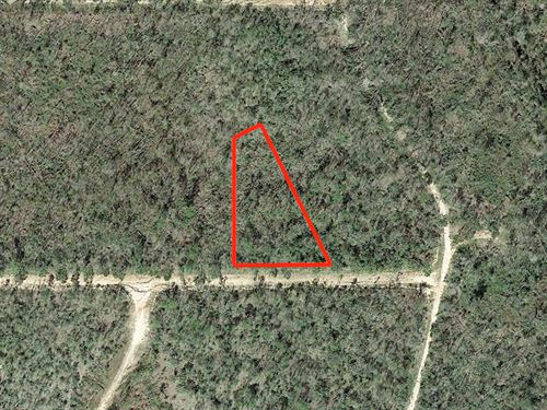 1.1 Acre Lot Outside Alford : Alford : Jackson County : Florida