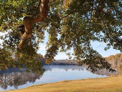 Yarrow Creek Hunting, Fishing & Equ : Williston : Barnwell County : South Carolina