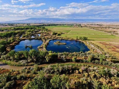 Colorado Duck Hunting Property : Olathe : Montrose County : Colorado