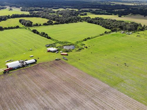 95 Acres in Zolfo Springs FL : Zolfo Springs : Hardee County : Florida