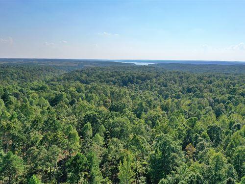 Land For Sale, 32 Acres : Savannah : Hardin County : Tennessee