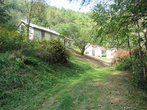 Beautiful Hunting Land Floyd County : Check : Floyd County : Virginia