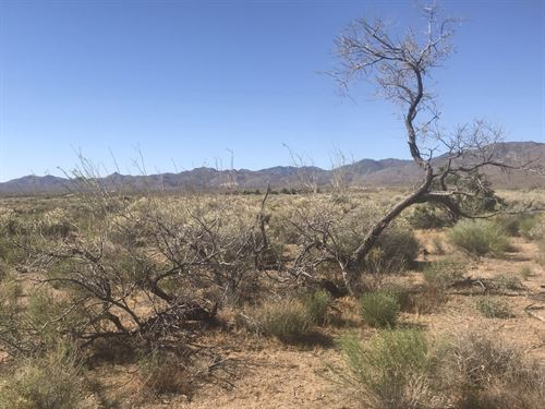 Perfect Lifestyle Only $135/Month : Golden Valley : Mohave County : Arizona