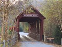 Private Gated Community, Lake Lure : Lake Lure : Cleveland County : North Carolina