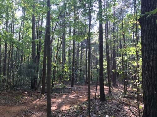 19.5 Acres With 2 Home Sites : Odenville : Saint Clair County : Alabama