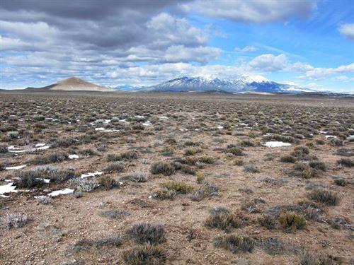 80 Acres Of Colorado Ranch Land : Fort Garland : Costilla County : Colorado