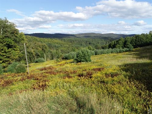 Blaisdell Brook : Randolph : Orange County : Vermont