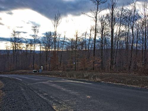 Pennsylvania Land 1.2 Acres : Scranton : Lackawanna County : Pennsylvania