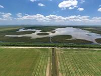 Sunbreak Farms : Fort Pierce : Saint Lucie County : Florida