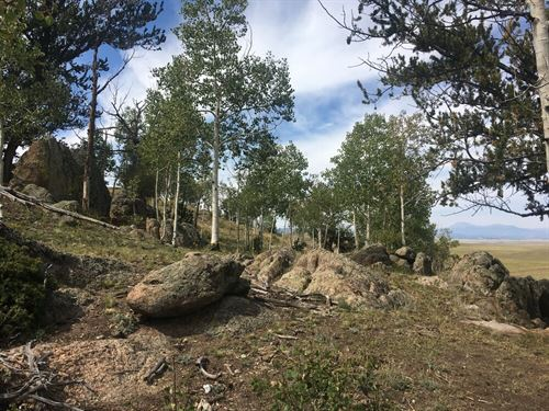 Private And Peaceful 5Ac In Park Co : Hartsel : Park County : Colorado