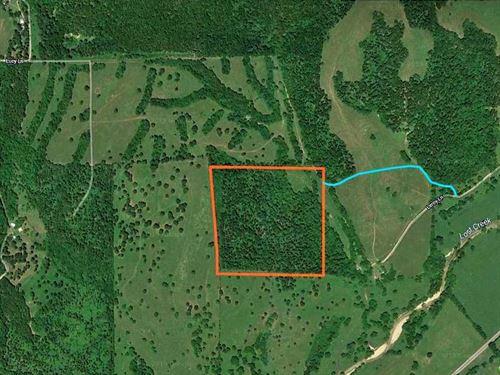 41 Acres in Seneca, MO : Seneca : Newton County : Missouri