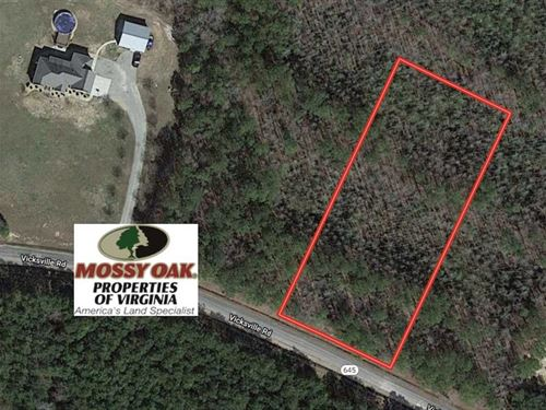 1.36 Acres of Undeveloped Land : Sedley : Southampton County : Virginia