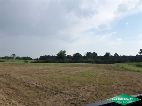 42 Ac, Hunting Tract With Camp : Baxterville : Lamar County : Mississippi
