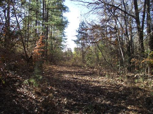 Large Acreage TN Land Tract : Bethel Springs : McNairy County : Tennessee