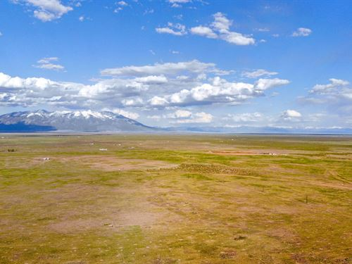 5 Acres With Electricity : Alamosa : Colorado