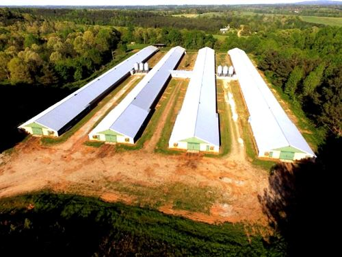 Class A Broiler Farm With House : Graham : Randolph County : Alabama