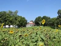 AR Home With Acreage For Sale : Evening Shade : Izard County : Arkansas