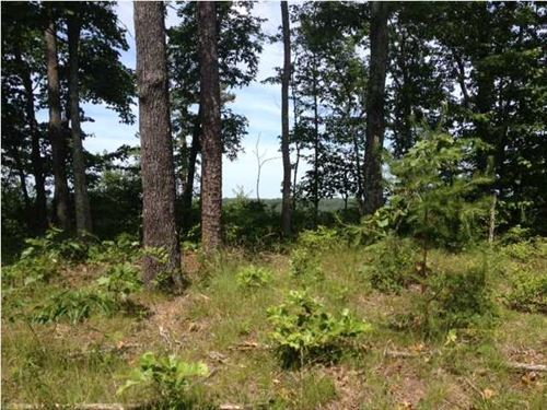 7.8+/- Acres, Beautiful Lot, View : South Pittsburg : Marion County : Tennessee
