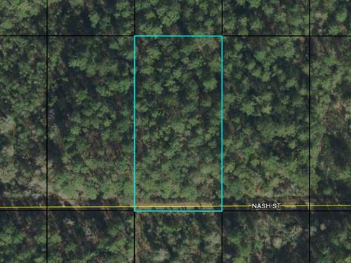 1.14 Acres In Flagler County Fl : Hastings : Flagler County : Florida