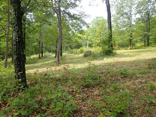 Ready To Build On 12 Acres : Yellville : Marion County : Arkansas