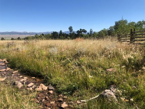 Colony Creek Hunting Land : Westcliffe : Custer County : Colorado