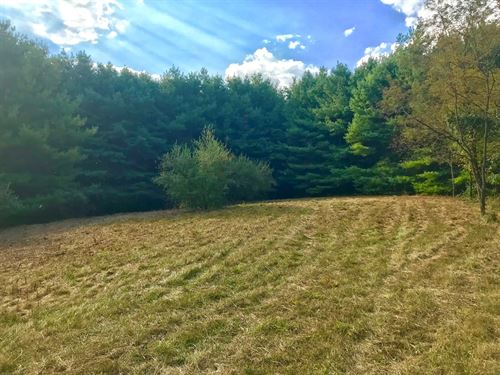 Hunting Recreational Property Riner : Riner : Floyd County : Virginia
