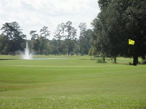 Carter Plantation Golf View Lot : Springfield : Livingston Parish : Louisiana