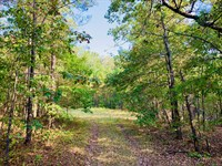 Home Site And Recreational Property : Cave Spring : Floyd County : Georgia
