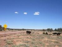 Home, Home On The Range, $65/Month : Snowflake : Navajo County : Arizona