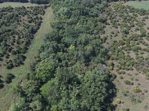 56 Acres Of Prime Deer Hunting : Cherryvale : Montgomery County : Kansas