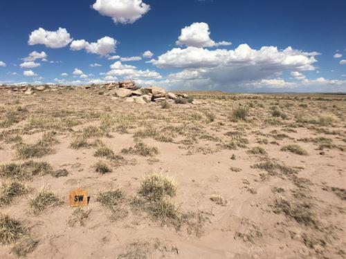 Enjoy Life With No Neighbors : Holbrook : Navajo County : Arizona