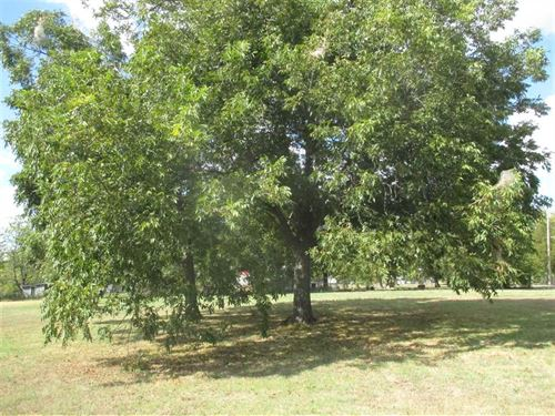 Shaded Residential Lot For Sale : Hugo : Choctaw County : Oklahoma