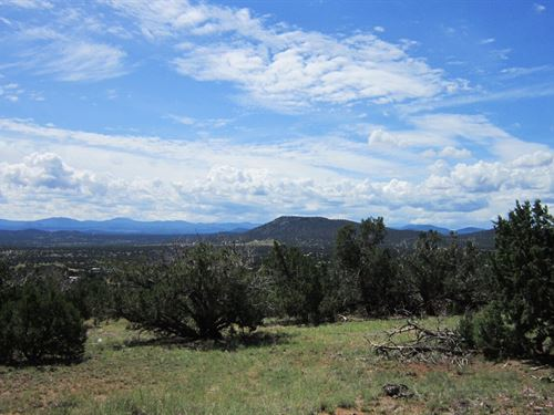 Pinons & Junipers W Electric At Lot : Concho : Apache County : Arizona