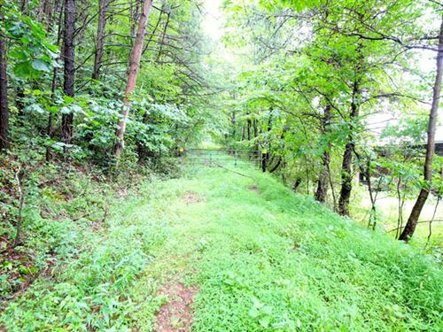 62 +/- Acre Wooded Parcel : Catawissa : Columbia County : Pennsylvania