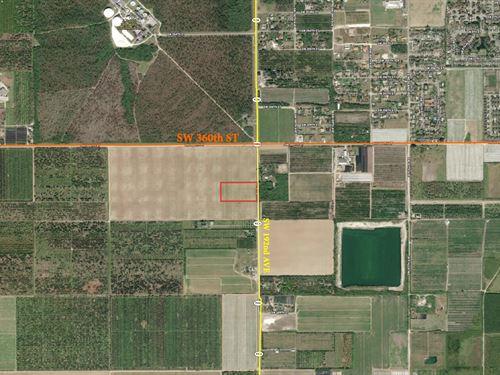 5 Acres Of Ag Land, Florida City : Florida City : Miami-Dade County : Florida