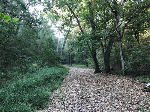 Hunting Land Bordersnational Forest : Onia : Stone County : Arkansas