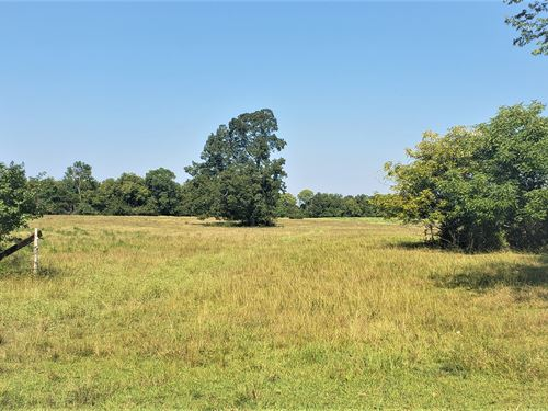 203 Ac, Marengo Co, Siddonsville : Faunsdale : Marengo County : Alabama