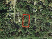 .95 Acre Lot Near Peach Tree City : Sharpsburg : Coweta County : Georgia